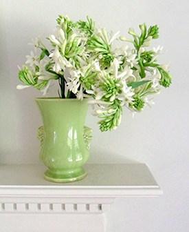 Vase of tuberoses, ©DR.